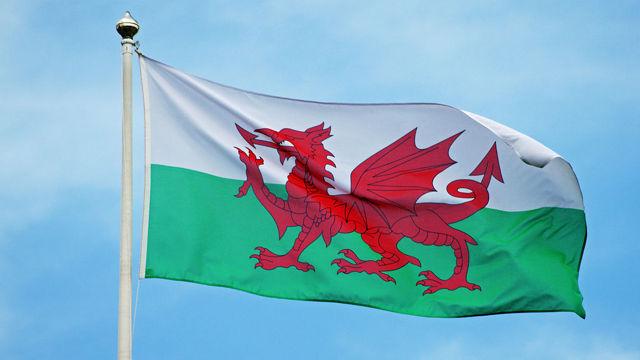 Plaid Cymru dixwaze xweseriya Galê bê xurtkirin