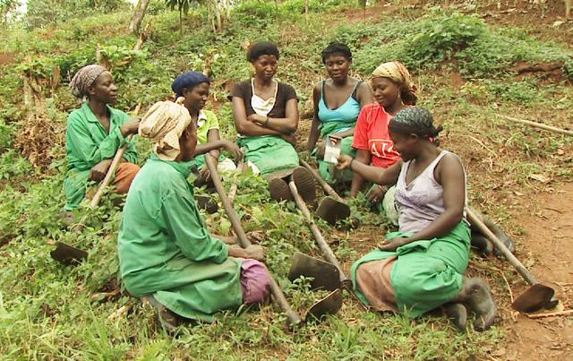 Cotkarên jin ên Zîmbabweyê zêde dibin