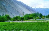 Gilgit-Baltîstan mafên aboriyê dixwaze