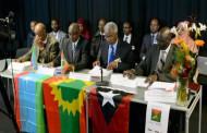 Li Etîyopyayê hêzên herêmî bûn yek