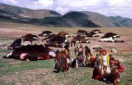 Rejîma Komara Îslamî kon û reşmalên pezdaran li zozanên Kurdistanê wêran dike