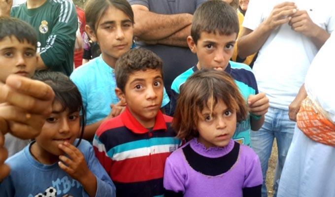 From survival to diaspora: the Yazidis in North Kurdistan